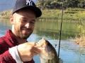 Artem Fish